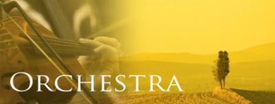 癒しの音楽 オーケストラCD詳細と購入はこちら